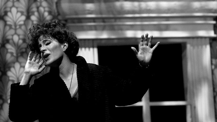 piaf-voz-y-delirio-el-musical-sobre-la-celebre-cantante-francesa-edith-piaf